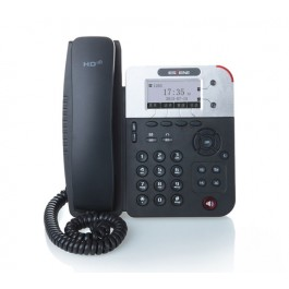 Escene ES290-PN  2 Line Executive VoIP Phone